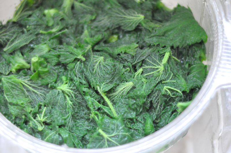 Nettles blanched