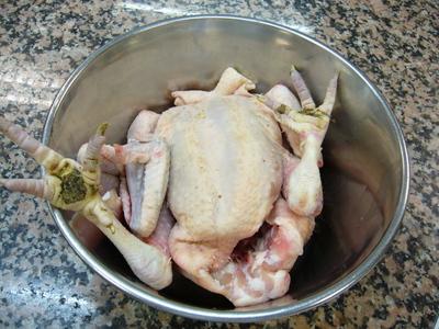 Chickeninpot_3